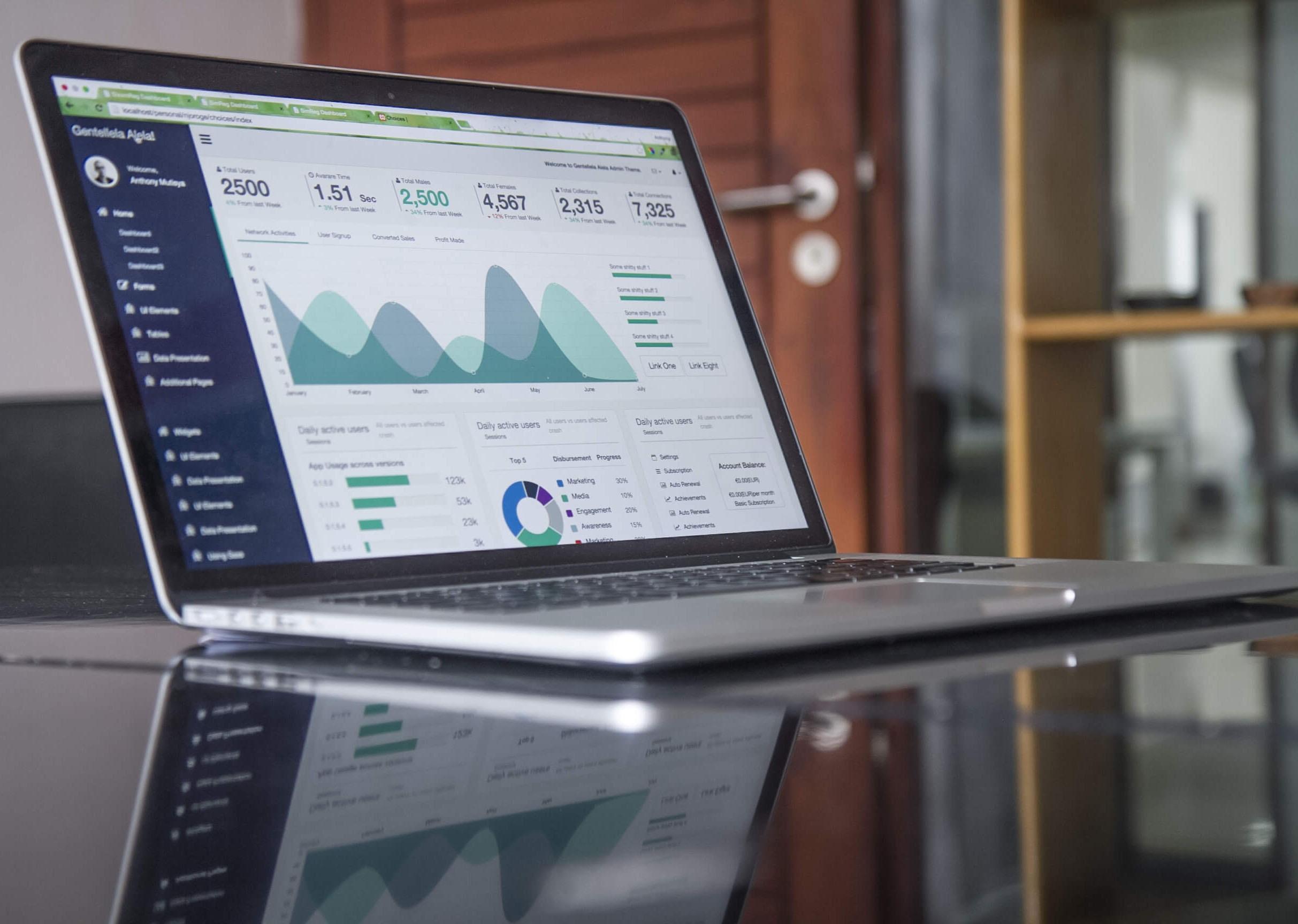 visual statistics on laptop